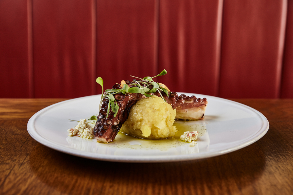 Roasted octopus with potato and tomato bread mash, basil olive oil, cilantro and cottage cheese